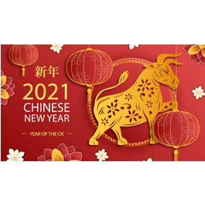 YESLY Wish you a Happy Chinese New Year